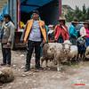 Mercado dominical - Combapata - Canchis - Cusco - Peru