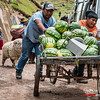 Vendedor de sandias - Mercado dominical - Combapata - Canchis - Cusco - Peru